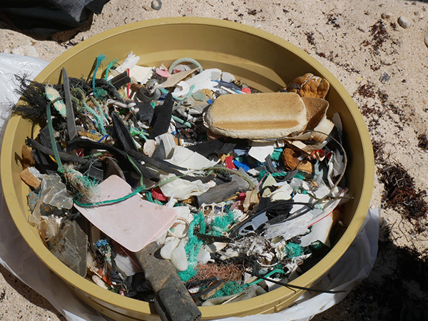 ensimag pollustion plastique atlantique