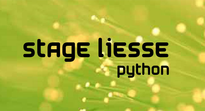 liesse-python-1.jpg