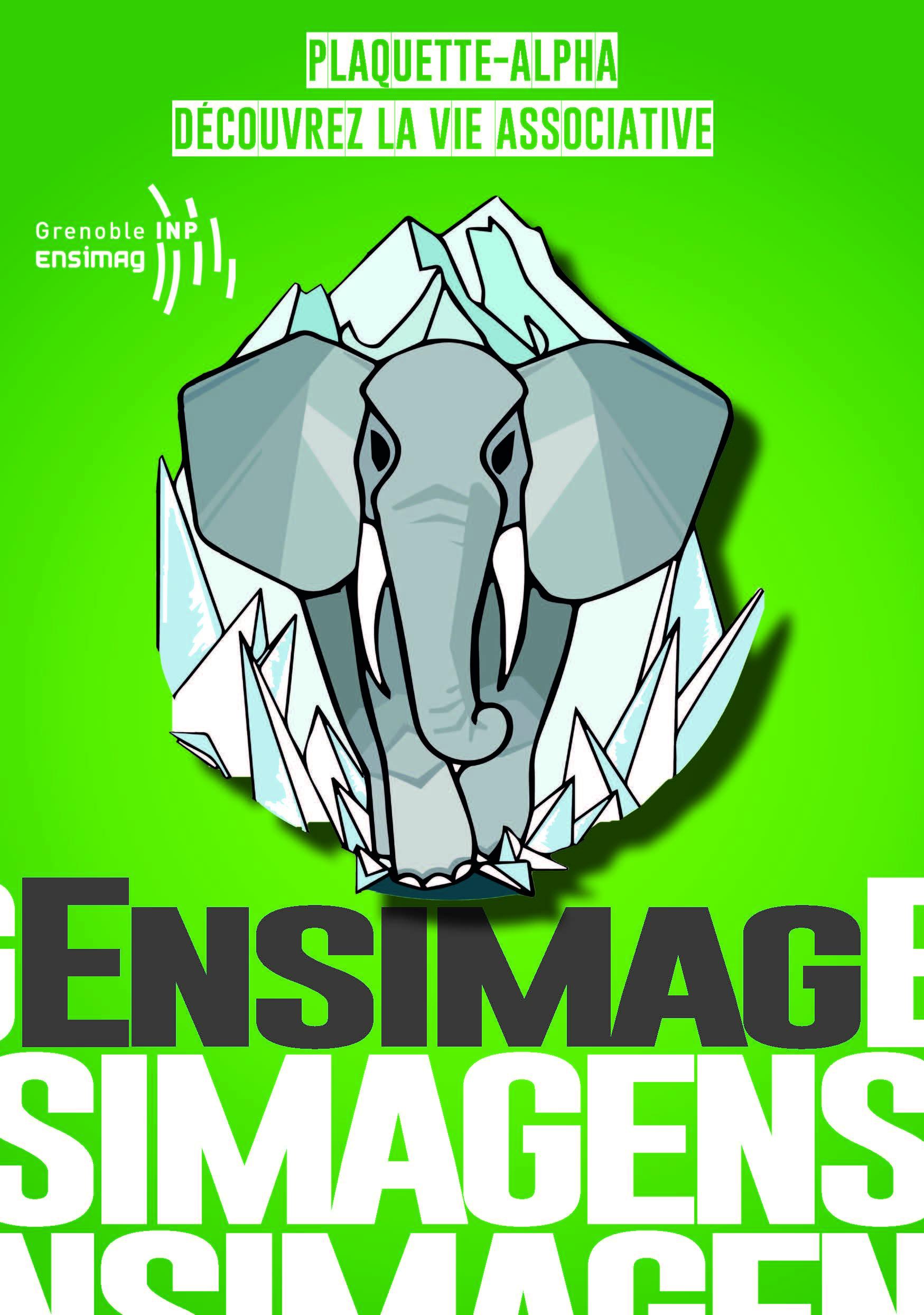 Ensimag-plaquette-alpha-2019